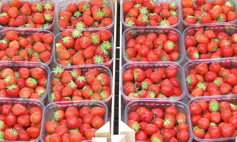 markt-erdbeeren